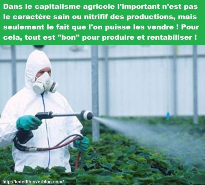 le-capitalisme-agricole-vendre-et-peu-importe-les-cancers