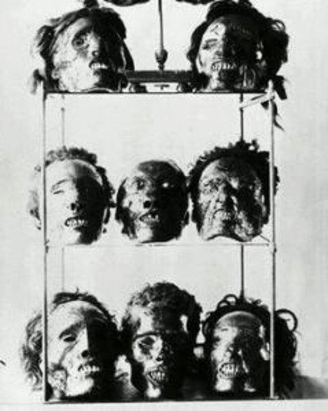Restes ( crânes ) de résistants algériens au Musée de l'Homme à Paris