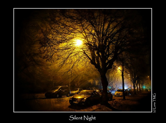 Silent Night © Luna TMG