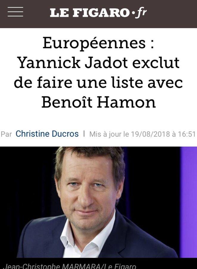 Y. Jadot refuse de discuter avec Benoit Hamon et le mouvement d'écologie politique Génération.s (août 2018) © lefigaro.fr
