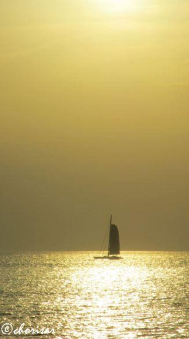 La voile dorée de Royan © Chorisar