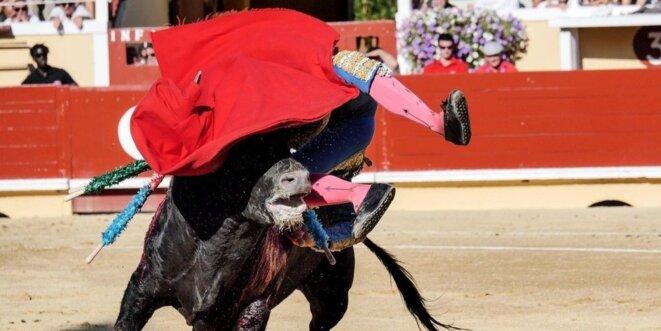thomas-joubert-a-ete-blesse-lors-de-la-corrida