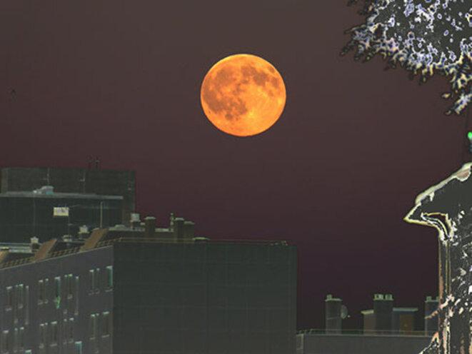 lune-orange