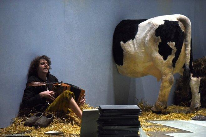 Colin, la paille  et la vache © Pascal Victor