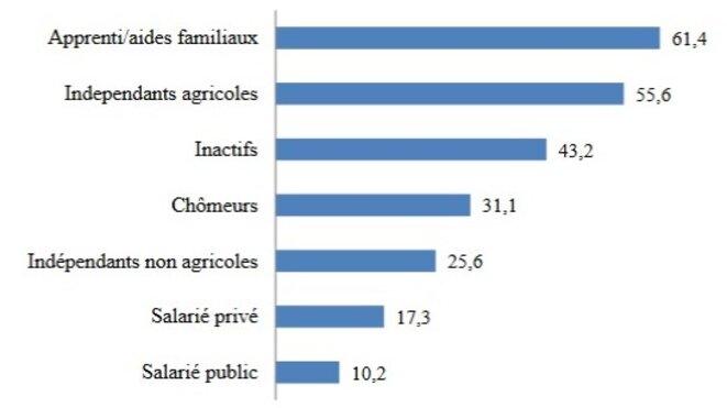 Taux de pauvreté des individus selon leur groupe socioéconomique (INSTAT :EMOP2017)