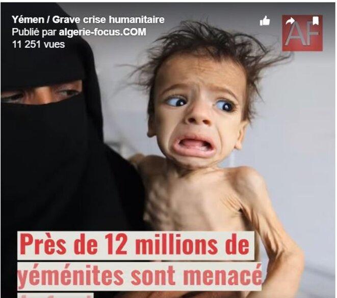© Algérie Focus