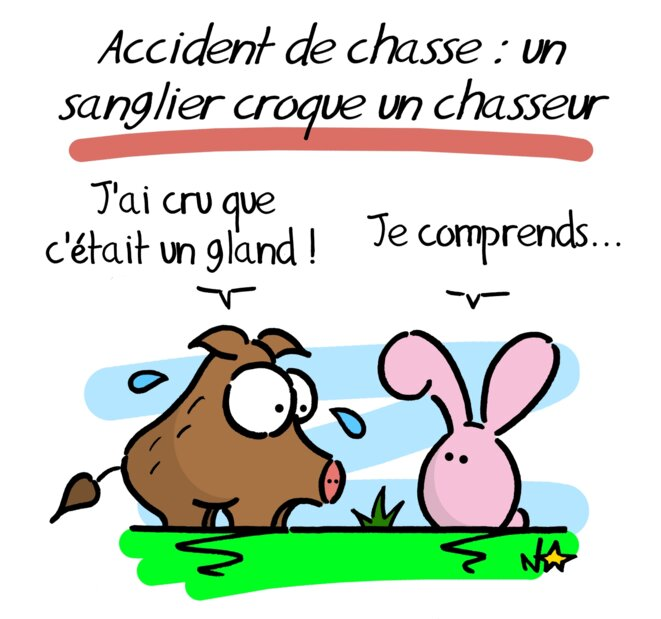 Accident de chasse © Norb