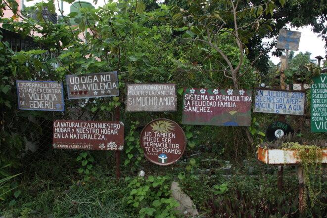 Jardin en permaculture à Cuba © Susanne Bollinger CC BY-SA 4.0