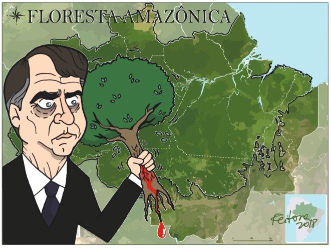 Resultado de imagen para bolsonaro vs amazonia