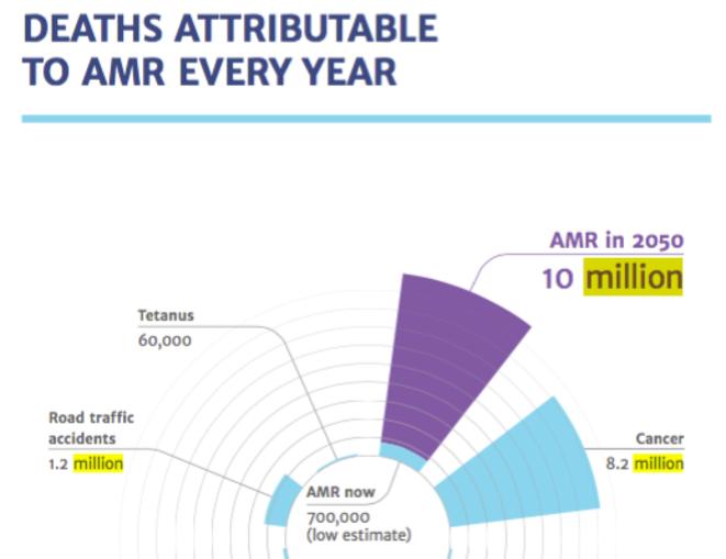 Nombre de décès annuels par maladie à micro-organisme multirésistante © UK Government independant commission Chair Jim O'Neil