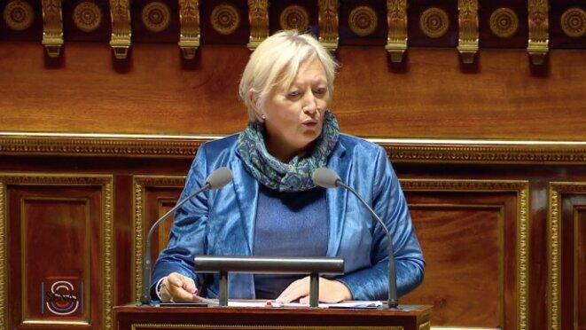 Catherine Morin-Desailly, rapporteure de la Commission de la culture, mardi 6 novembre. © Sénat
