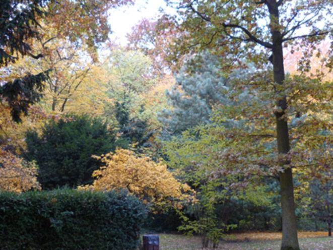 Le parc de Notre Dame de Sion en automne ...