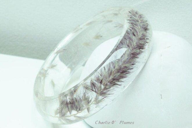 charlie-o-plumes-1