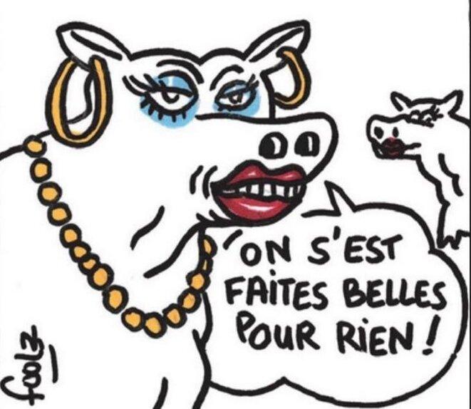les-vaches-depitees-ne-passeront-pas-a-la-tv