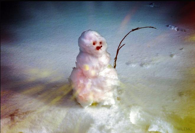 The happiest snowman on Earth © Luna TMG