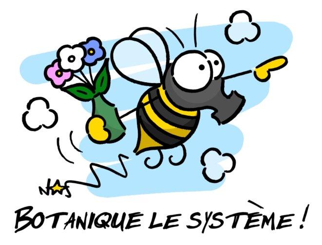 Botanique le système! © Norb