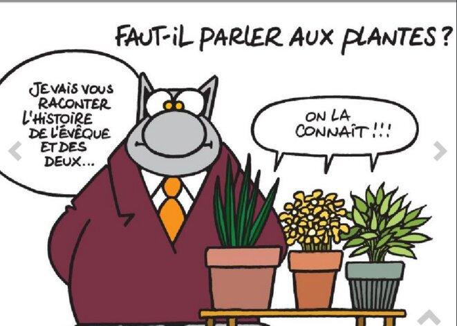 geluck-parle-aux-plantes