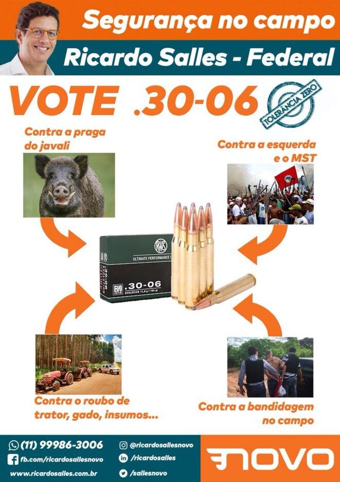 Affiche de campagne de Ricardo Salles aux législatives d'octobre 2018 © En ligne au lien suivant : https://www.brasildefato.com.br/2018/08/17/candidato-do-partido-novo-incita-violencia-contra-sem-terra-em-redes-sociais/