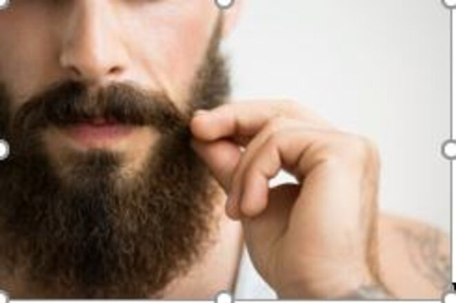 barbe-et-barbus