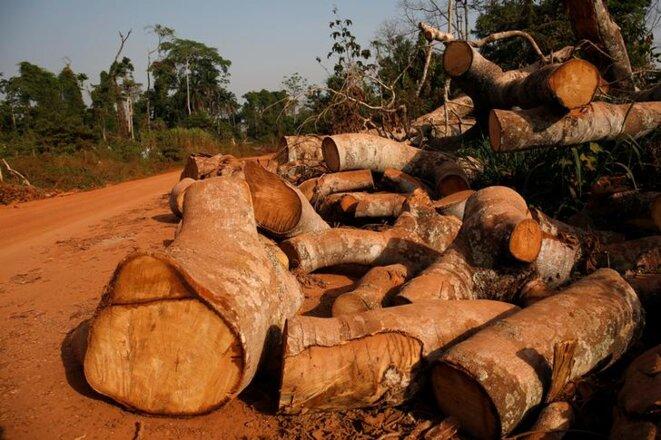 Dans la réserve forestière du Scio en Côte d'Ivoire, le 9 février 2018. © Reuters