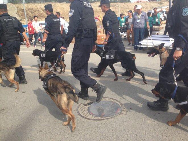 Officiers de l'unité tactique de la police et chiens policiers dans les rues d'Urumqi, Xinjiang. © Voxeros/Flickr