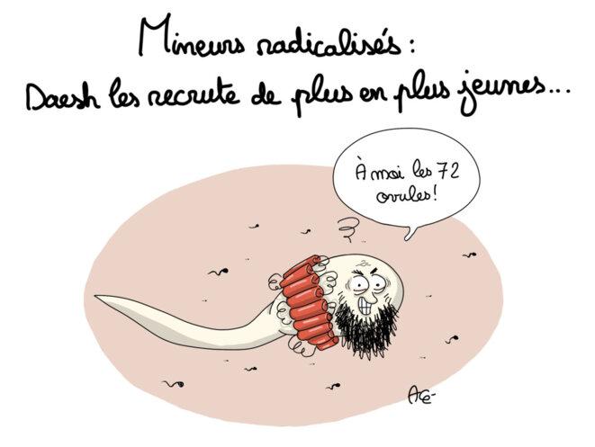 radicalisation-spermatozoide