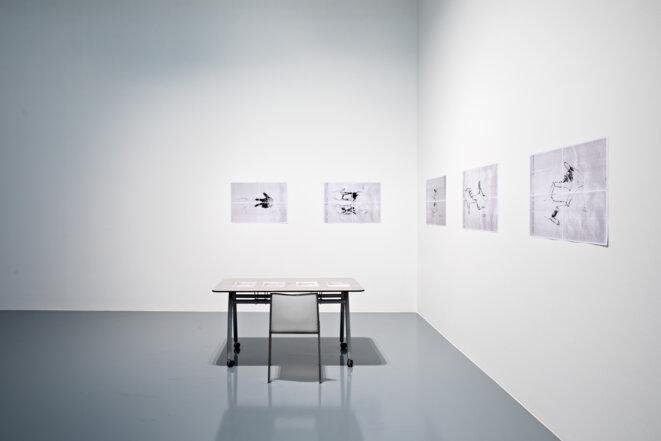 """Eva Weinmayr, """"Lery"""" , 1998, 2018, Vue de l'exposition """"Fabriques des contre-savoirs"""", FRAC Lorraine, 2018. © Photo : Fred Dott"""