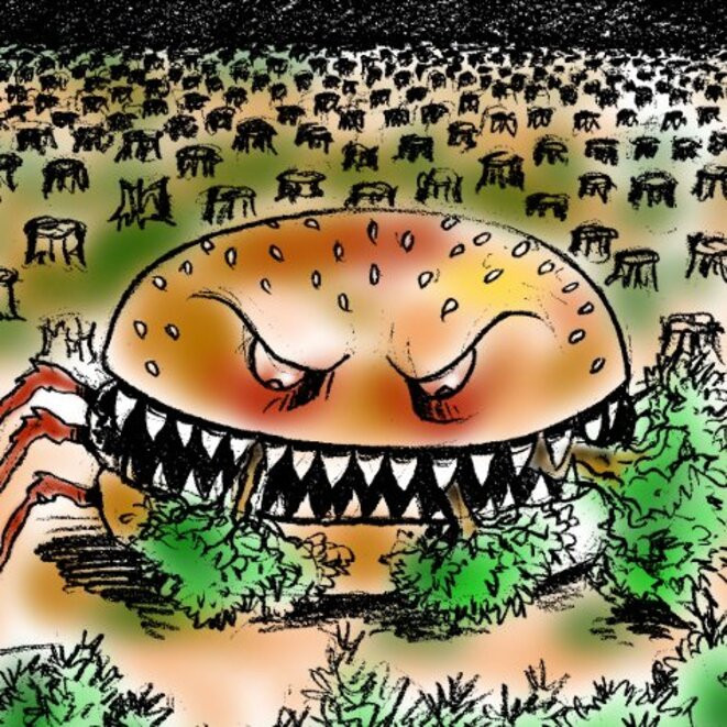 lv-burger-foret