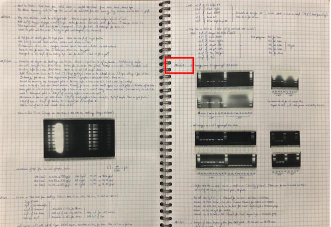 Une page du cahier de laboratoire fabriquée par Patrice Dunoyer © Ethique & Intégrité