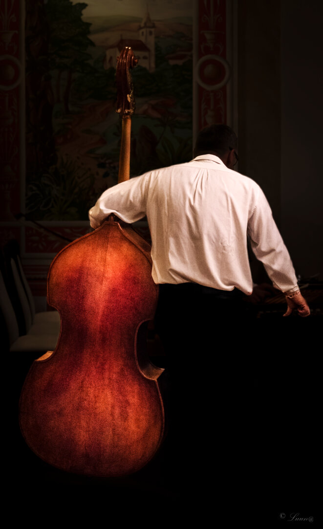 musicien-5