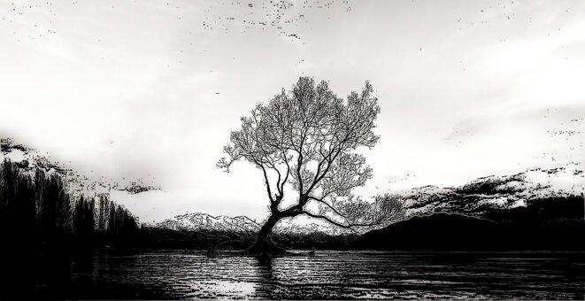 solitude-accompagnee