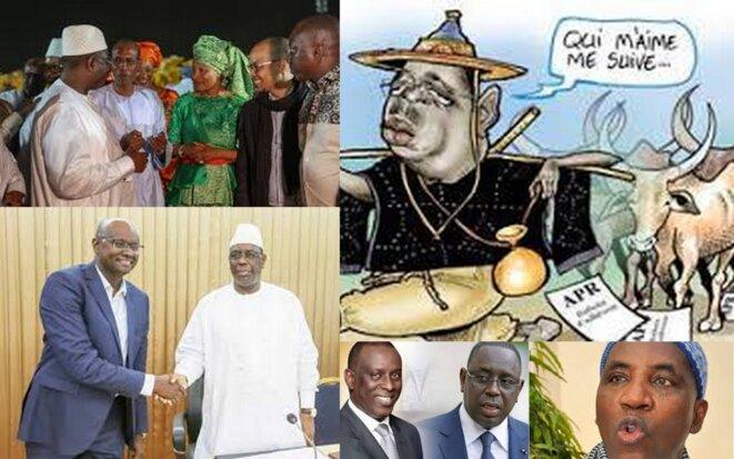 Transhumance au Sénégal