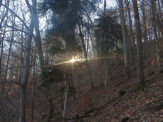 reflets-soleil-2