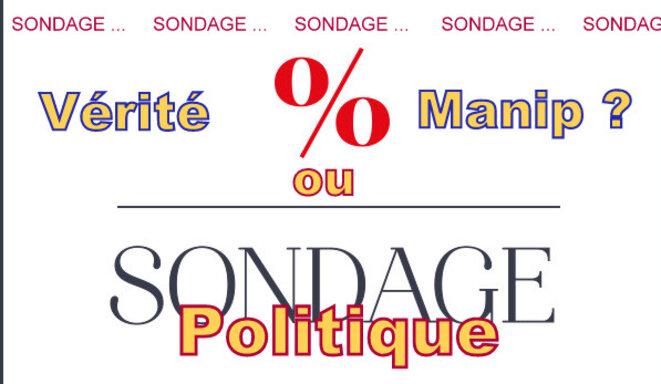 Les sondages sont-ils vrais ? © Pierre Reynaud