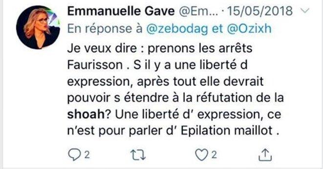 emmanuelle-gave
