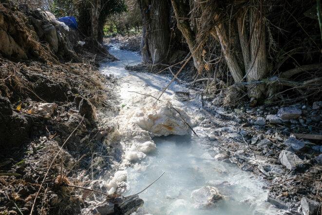 La «source à pastis» du ruisseau du Gourg Peyris sur la commune de Salsigne. © Olivier Saint-Hilaire