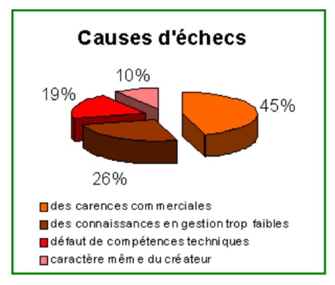 Causes echec entreprise