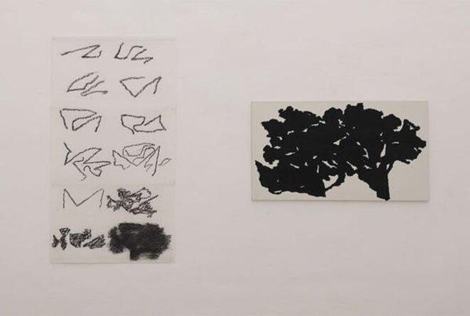 Alexandre Hollan, L'invisible est le visible au Musée Fabre, Salle 1