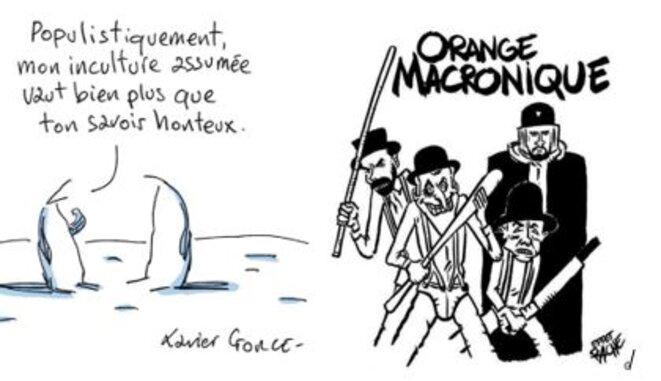 inculture-et-orange-macronique
