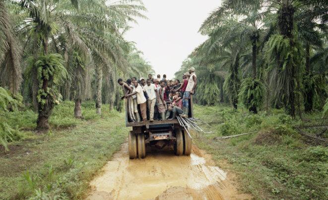 Les riverains et riveraines de la Socapalm sont en lutte depuis des années contre ce qu'ils considèrent un accaparement de terre dans leur territoire, au Cameroun. © Isabelle Alexandra Ricq