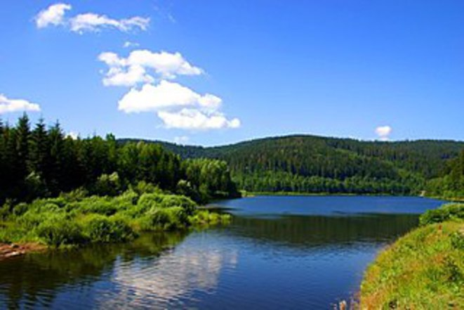 Lagunde de Vistule, trois zones Natura 2000 et l'un des plus grands sites de reproduction d'oiseaux migrateurs en Europe © CC cf Wikipédia