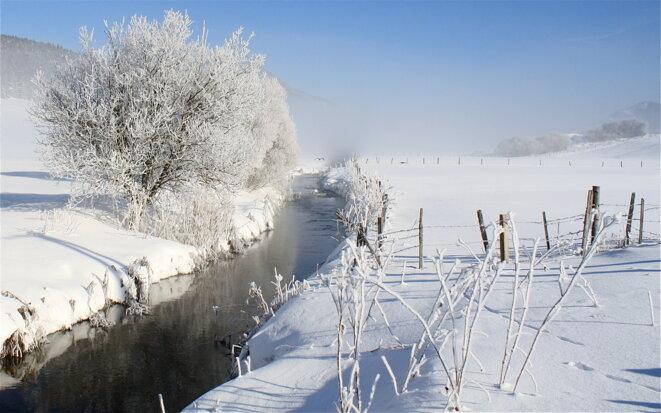 La Bourne, rivière de givre © Patrice Morel (janvier 2019)