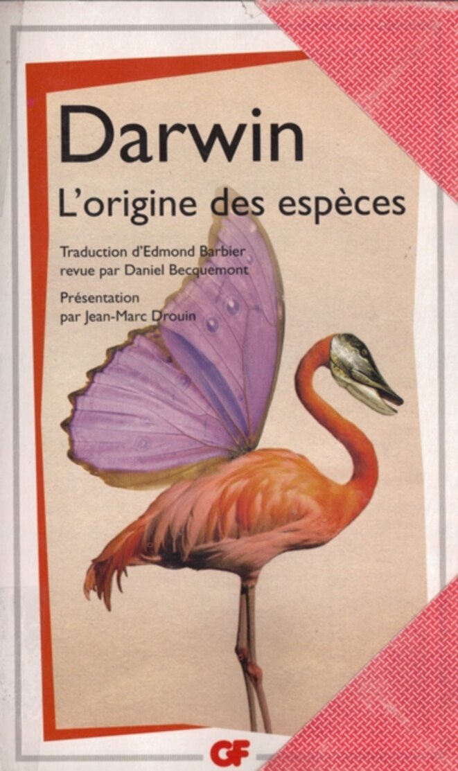 lorigine-des-especes