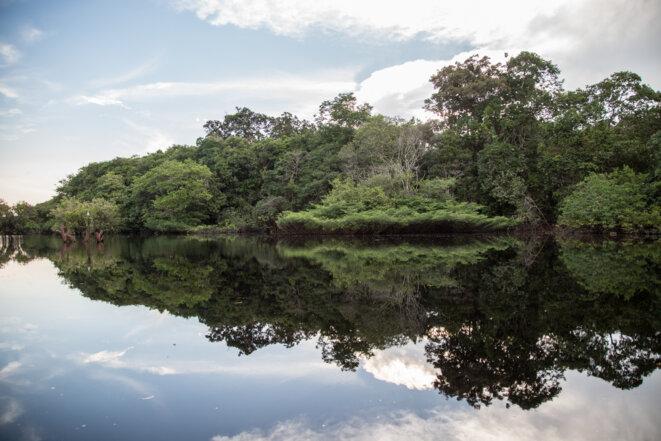 2018 Voyage en Amazonie © Jean Claude Aldonce
