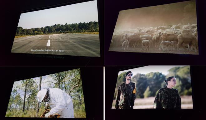 Montage photogrammes © T. Hespanha_Terratreme Filmes