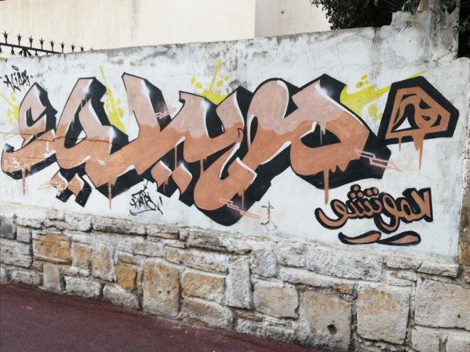 Graffiti dans le quartier Hassan portant les inscriptions de Mobydick et Lmoutchou en arabe © Tayeb Laabi