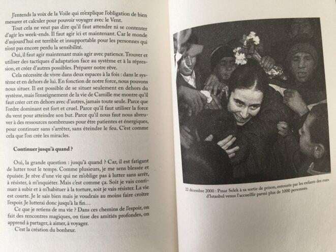 L'Insolente - Dialogues avec Pinar Selek de Guillaume Gamblin © Éditions Cambourakis, en co-édition avec la Revue S!lence, 2019.