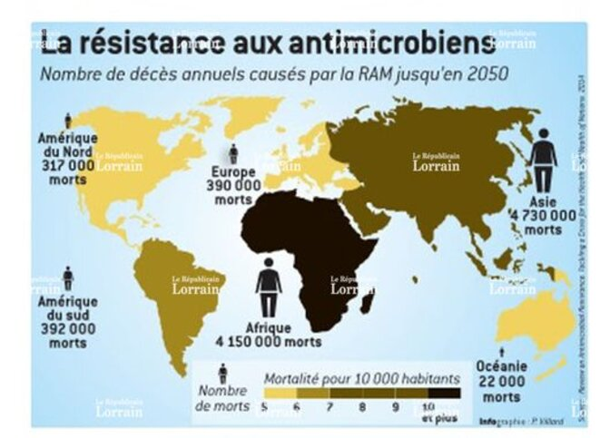 re-sistance-antibio-carte