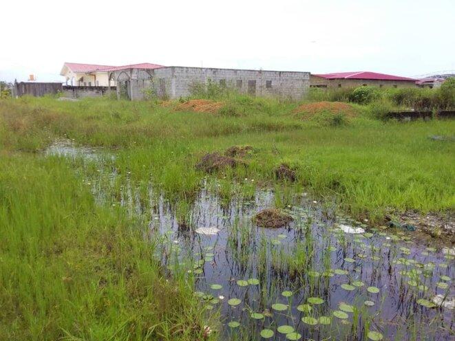 SNEC- SCI SERPENTIN -Maisons inachevées d'Akanda