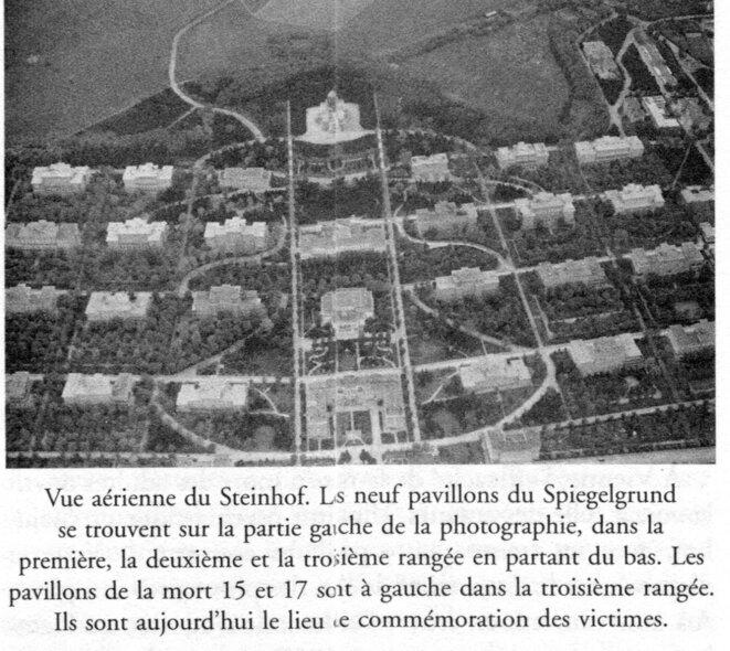 """L'endroit où ne travaillait pas Hans Asperger © Extrait Edith Sheffer : """"Les enfants d'Asperger"""""""